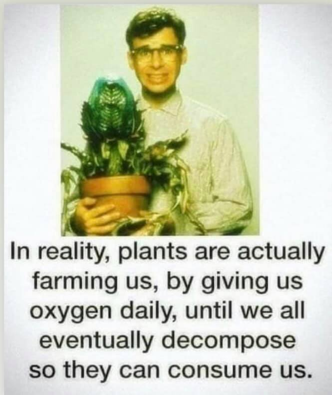 plants joke.jpg