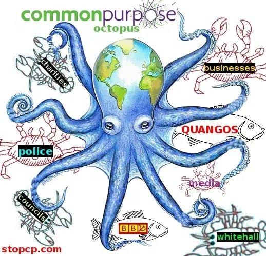 commonpurposeoctopus.jpg.b5b400d6475497ea2b71397176f6d659.jpg