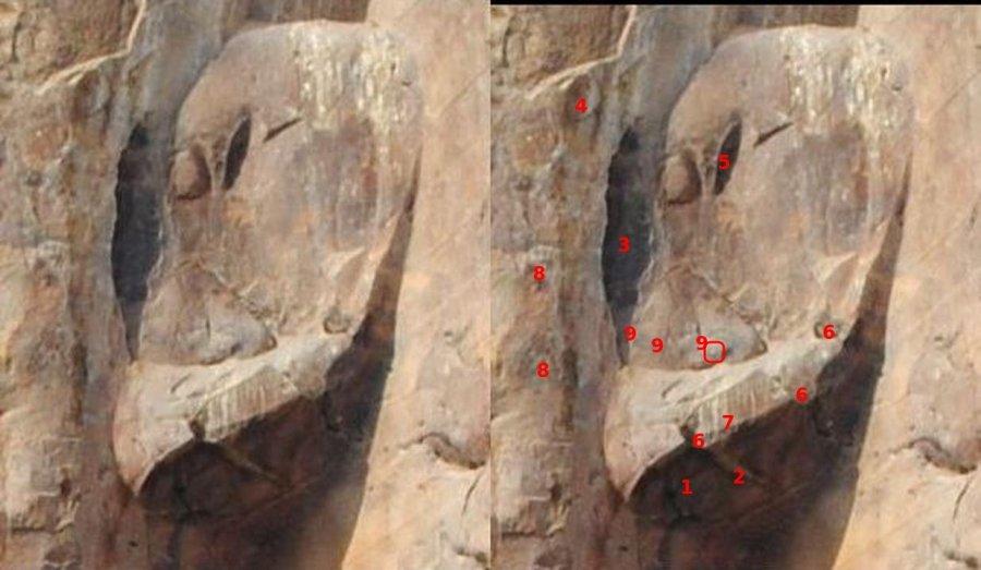 osiris-left-ear.jpg.f9a6d8be3b49e50b8051c882cc3e836d.jpg
