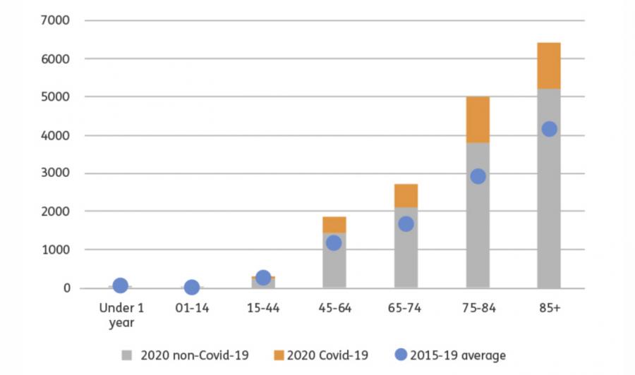 covid_deaths_demographics.png.3accf241c2ced73d183bad56787ea027.png