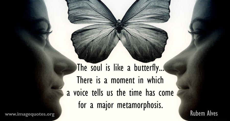 the-soul-is-like-a-butterfly-there-is-a-moment-in-which-a-voice-rubem-alves-quote.jpg.466b123677e8865900de0cd3ca943aa9.jpg