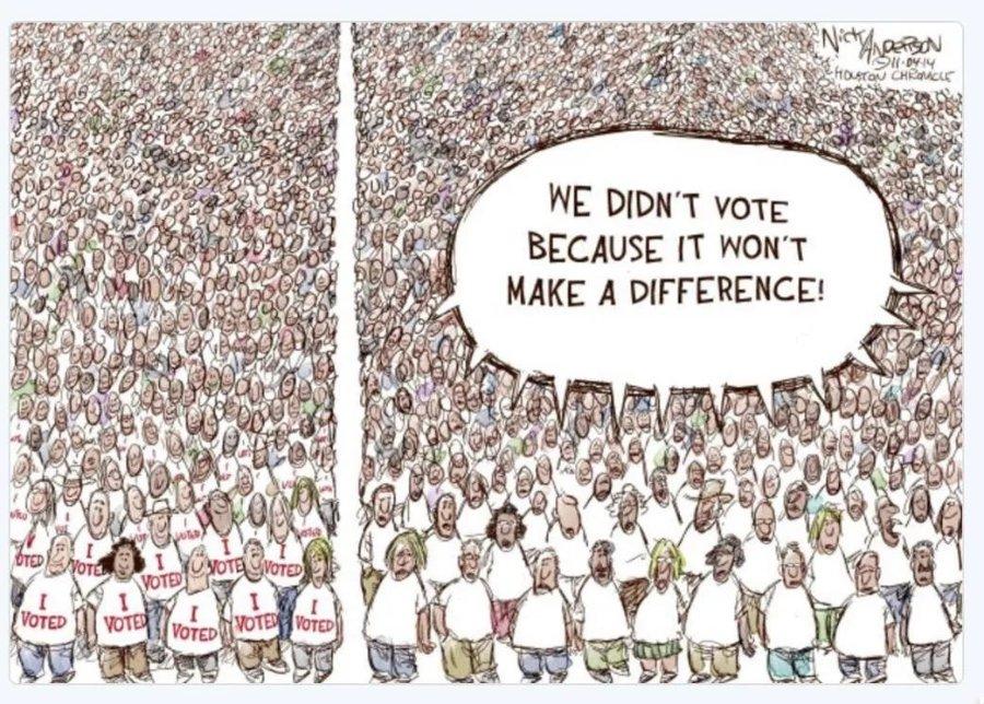 we-didn't-vote.jpg