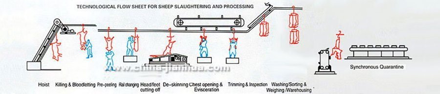 3-sheep-slaughter-line_02b.jpg
