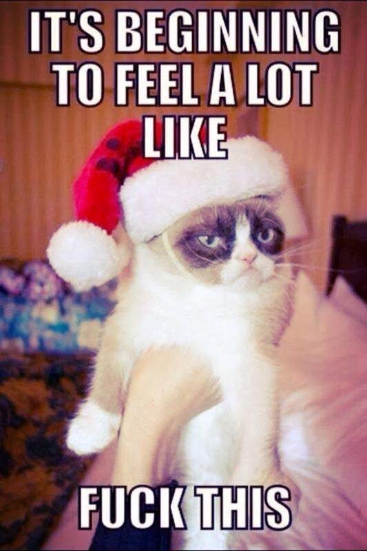 746c29a1cfb732d994f02e0359365f69--christmas--christmas-jokes.jpg