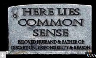 a common sense.PNG