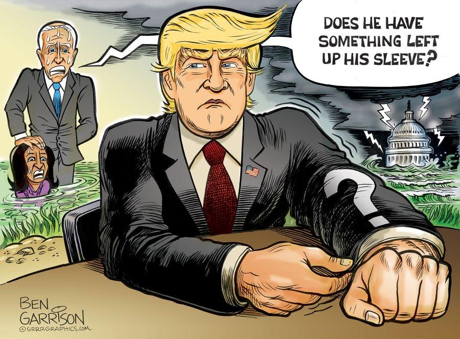 trump_up_his_sleeve.jpg