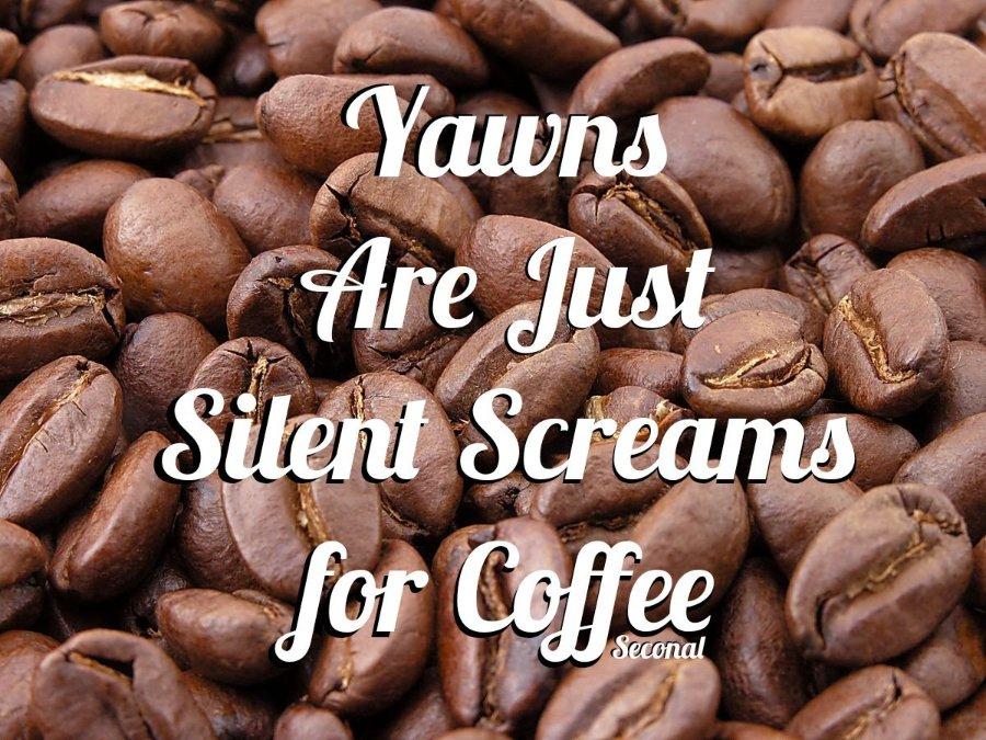 Roasted_coffee_beans_kindlephoto-1997147364.jpg.1527609b3499f6f6276a6b1817eafd28.jpg