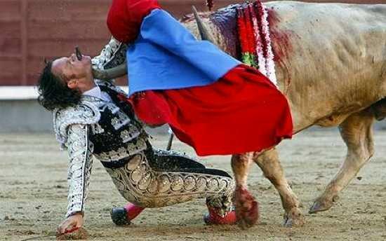 bullfighter-gored-_1641811c.jpg