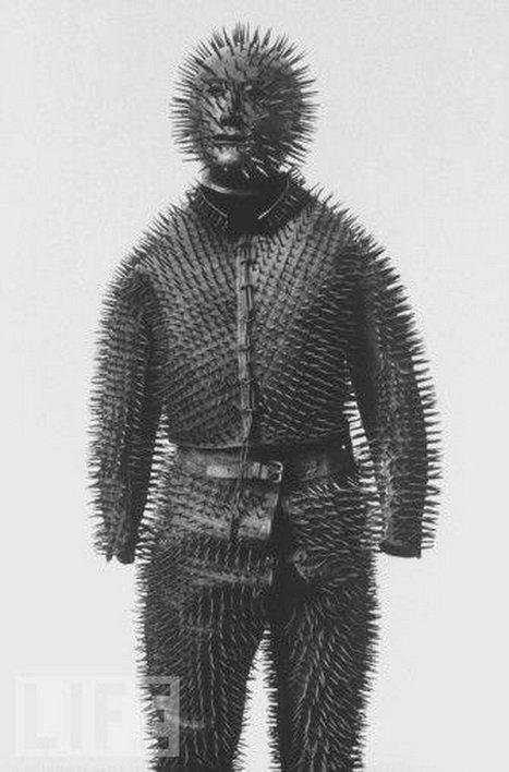 bear-anti-bear-suit.jpg.485945210227065527fd8ad24770c68d.jpg