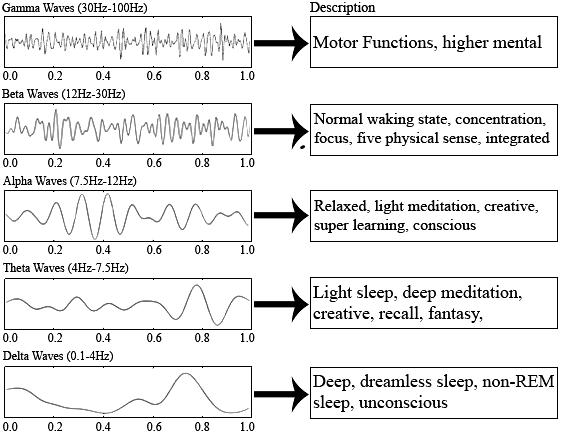 Brain-waves-charts-description.png.de402abcca885f1e69998573e0ddb472.png